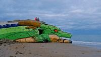 Un dragon en Normandie ?
