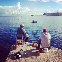 2 pêcheurs et des amis.