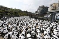 Trouvez le Panda