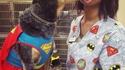 Super chien lance super-léchouille, c'est super efficace