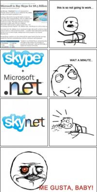 Skypenet