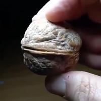 Avoir la noix.