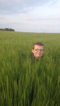 Dans les champs, personne ne vous entendra crier