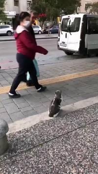 Cassez-vous avec vos jambes