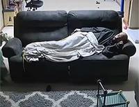 Quand tu as eu le droit au canapé ...