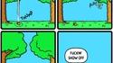 Chêne vs Érable