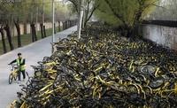Marée de vélos