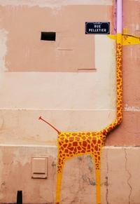 La girafe de la rue Pelletier