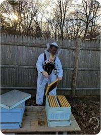 Fils d'apiculteur