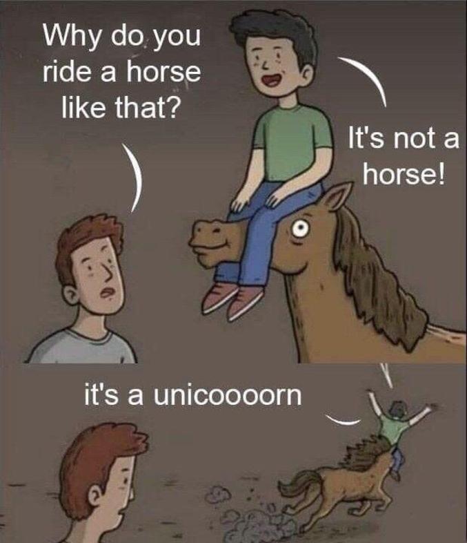 Ce n'est pas un cheval, c'est une licooooorne !