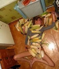 Ici, pas de bananes tueuses, uniquement des endives !