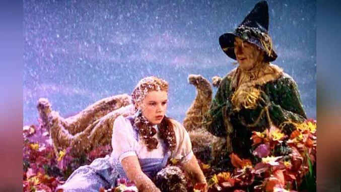 ... que toute la neige de ta scène est de la pure amiante. :/ Judy Garland, Le magigien d'Oz 'The Wizard of Oz', 1939