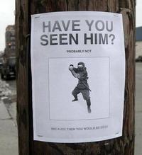 L'avez vous vu ?