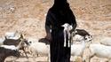 Gardienne de chèvres à Hadramaout (Yémen)