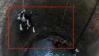Une Indienne sauve un chien tombé dans un puits