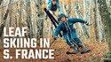 Du ski et des feuilles