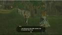 Link vole la vedette