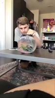 Dresser son poisson