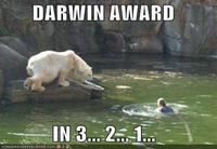 suicide par ours blanc interposé
