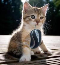 J'ai trouvé une souris !