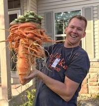 Grosse carotte