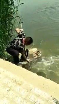 Une pêche abondante