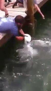 Nouvelle technique de pêche