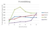 Évolution de la proteintbilung sur 6