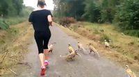 footing en bonne compagnie