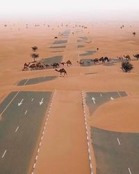De l'utilité des routes en Arabie