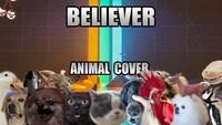 Version animale de Believer (imagine dragons)