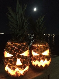Halloween tropical