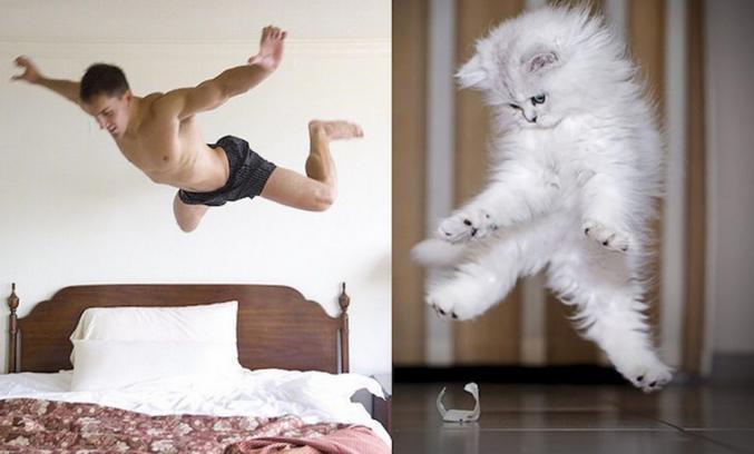 avec sa chatte.