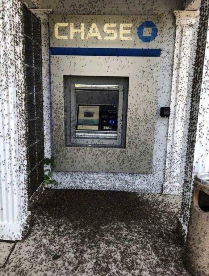 Vous avez absolument besoin d'argent dans les deux minutes, vous n'avez que votre carte bleue et ce distributeur est votre ultime chance. Que faites-vous ?