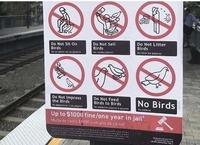 J'aime pas les oiseaux