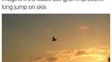 Un oiseau ?