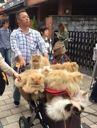 Marchand ambulant en Chine