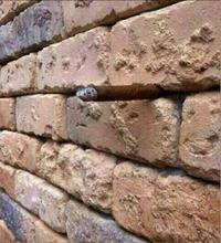 Qu'est-ce qui sort de ce mur ?