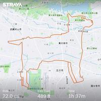 Parcours à vélo