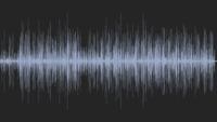La chanson du Poireau (exception mix 2006)
