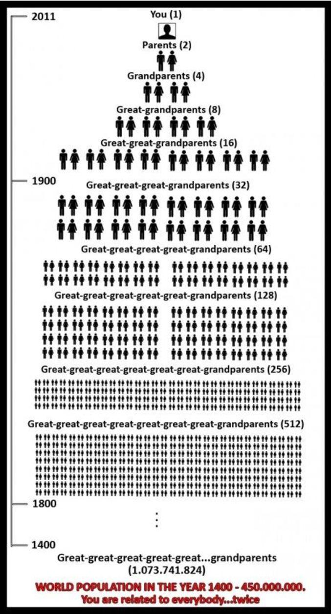 world population relationship tree