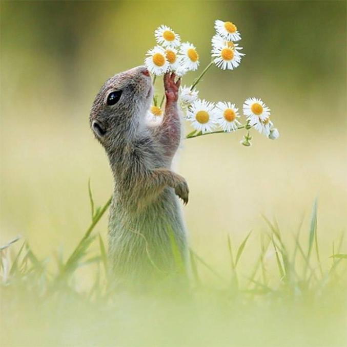 Il est l'heure de conter fleurette.