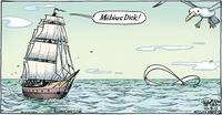 Drôle de baleine