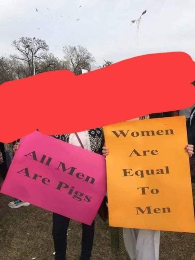 [Pancarte rose] Tout les hommes sont des porcs [Pancarte orange] Les femmes sont égales aux hommes