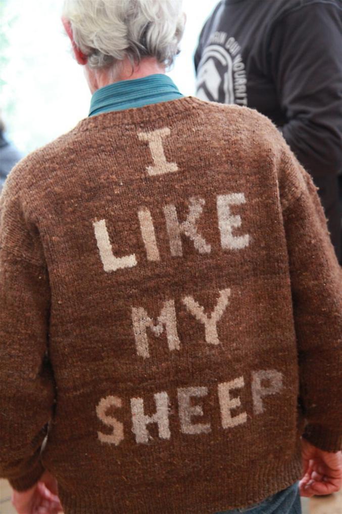 venez à moi, je suis le berger.