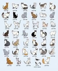 La charthiche des chats chiches