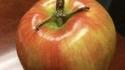 Il s'enlise dans une pomme...