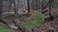 Un tout terrain dans la forêt
