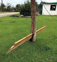 Note pour plus tard : ne pas fâcher Irma