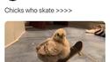 Tu es skateur ?